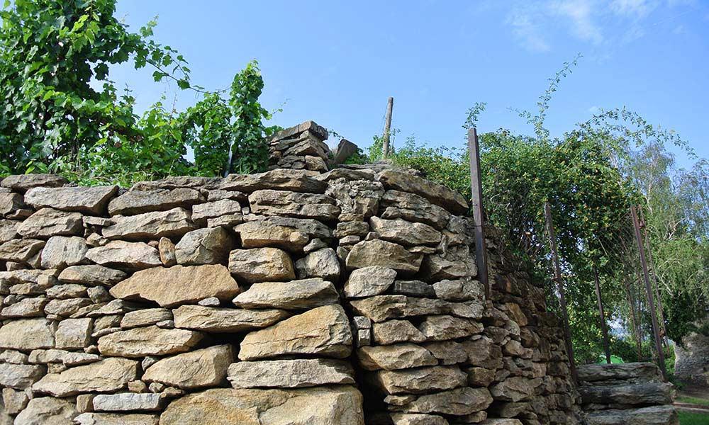 Steinmauer Weingärten Trockenmauer
